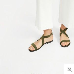 NWT Everlane Modern Wrap Flat Sandal Dark Green